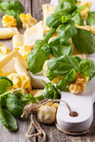 Pasta ravioli with basil Stock Images