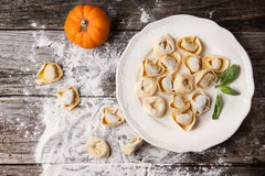 Pasta ravioli with pumpkin Stock Image