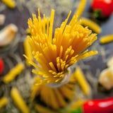 Pasta. Raw Italian pasta, close-up macro chot Royalty Free Stock Photos