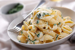 Pasta with ricotta and spinach Stock Images