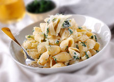 Pasta with ricotta and spinach Royalty Free Stock Photos