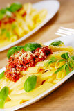 Pasta rigatoni on the white plate Royalty Free Stock Image