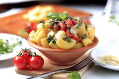 Free Pasta Salad Royalty Free Stock Photo - 13918555