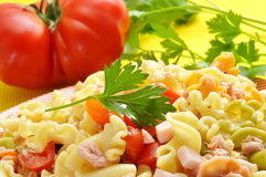 Pasta salad. Closeup of a plate with refreshing pasta salad royalty free stock photos