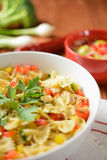 Pasta salad with chicken meat and pepper Stock Photos