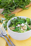 Pasta salad with farfalle, peas and feta Royalty Free Stock Images