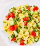 Pasta salad with tomato and cucumber Royalty Free Stock Image