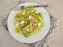 Pasta salad with tuna, lettuce, horseradish cream and basil sprouts Stock Photography