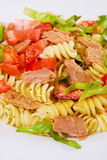 Pasta salad with tuna meat Royalty Free Stock Photo