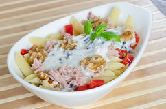 Pasta salad with tuna and walnuts. Close take on a bowl of pasta with tuna and walnuts Stock Images