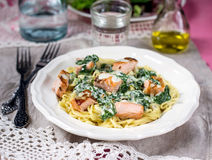 Pasta with salmon and creamy spinach sauce Royalty Free Stock Image