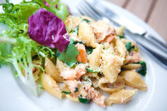 Pasta with salmon and spinach. Royalty Free Stock Photo