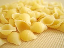Pasta shell Stock Photo