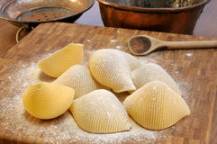 Pasta shells Stock Photos
