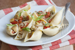 Pasta shells Stock Images
