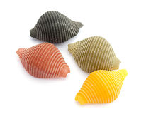 Pasta shells Royalty Free Stock Photography