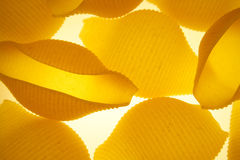 Pasta shells. Assorted pasta shells in backlight royalty free stock images