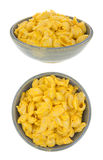 Pasta shells with cheese sauce in bowl Royalty Free Stock Images