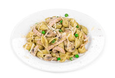 Pasta shells with vegetables and sausage cheese. Royalty Free Stock Photo