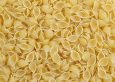 Pasta- small shell Royalty Free Stock Photo