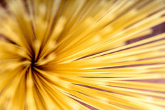 Pasta Spaghetti Abstract Background Stock Images