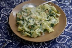 Pasta with spinach and salmon fish Stock Images