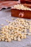 Pasta Stars Royalty Free Stock Photos