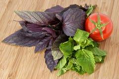 Pasta, tomato, basil, mint on wood board. Italian pasta, fresh tomato, basil, mint on wood board Stock Photo