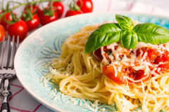 Pasta. With a tomato sauce royalty free stock images