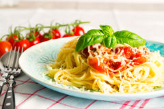 Pasta. With a tomato sauce royalty free stock photos