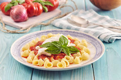 Pasta with tomato sauce and ricotta. Pasta conchiglie type with tomato sauce and ricotta on an aquamarine wooden table surrounded by fresh tomatoes and onion Stock Image