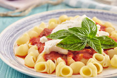 Pasta with tomato sauce and ricotta. Pasta conchiglie type with tomato sauce and ricotta on an aquamarine wooden table surrounded by fresh tomatoes and onion Stock Images