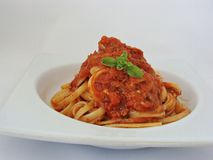 Pasta with tuna and tomato sauce. Italian pasta with homemade spaghetti sauce and canned tuna Stock Image