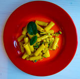 Pasta with vegetables, zucchini flowers, saffron and mint. Red dish with seasoned pasta with zucchini flowers, vegetables, saffron and muentuccia, healthy food royalty free stock photos