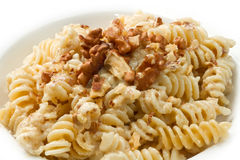 Pasta with a walnut Stock Image