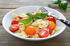 Pasta in a white bowl Royalty Free Stock Image