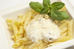Pasta with white sauce. Cooked penne pasta with white sauce Royalty Free Stock Image