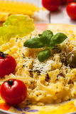 Pasta with yellow cheese Royalty Free Stock Photos
