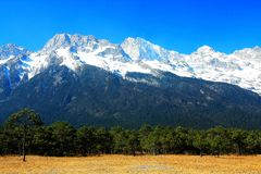 A pastagem alpina sob Jade Dragon Snow Mountain imagem de stock royalty free