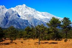 A pastagem alpina sob Jade Dragon Snow Mountain imagens de stock royalty free