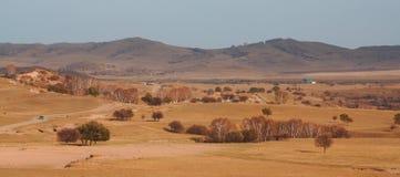 Pastagem de Bashang em Inter-Mongolia de China Fotografia de Stock