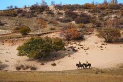 Pastagem de Bashang em Inter-Mongolia de China Imagem de Stock