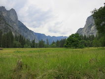 Pastagem do vale de Yosemite Fotografia de Stock