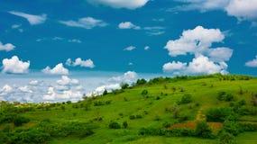 Pastagem e nuvens verdes Imagem de Stock
