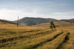 Pastagem em Okhota no verão imagens de stock