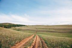 Pastagem em Sibéria ocidental Fotografia de Stock