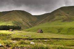 Pastagem nas montanhas Imagens de Stock Royalty Free