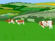 Pastando vacas ilustração stock