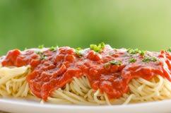 Pastas con la salsa de tomate Fotografía de archivo libre de regalías