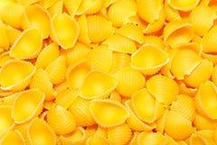 Pastas - Conchiglie Foto de archivo libre de regalías